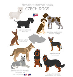 Dogs country origin czech dog breeds vector