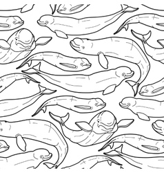Graphic beluga whale pattern vector