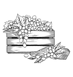 Graphic wooden box grapes decorated with leaves vector