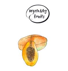 half and one whole papaya vector image