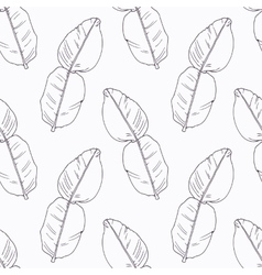 Hand drawn kaffir lime branch outline seamless vector