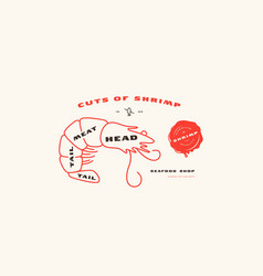 Stock shrimp cuts diagram in thin line style vector