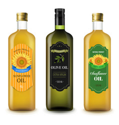 Sunflowers and olive oils bottles set white vector