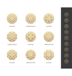 Golden round flower logo set vector image