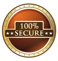 Hundred Percent Secure vector image vector image