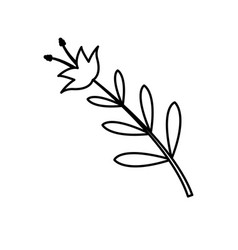 flower leaves natural spring decoration image line vector image vector image