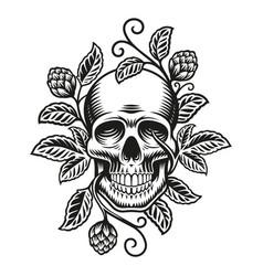 a beer skull vector image