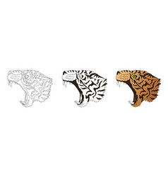 angry leopard portrait tiger predator head vector image