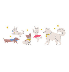 Cute dog breeds and stars puppy vector