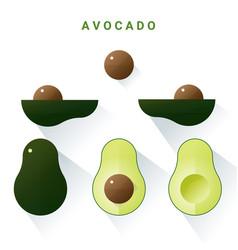 set fresh avocados isolated on white background vector image