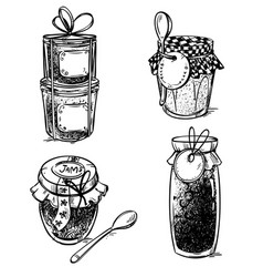 set hand drawn mason jars with jam vector image