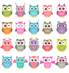 set of colorful owls isolated on white vector image