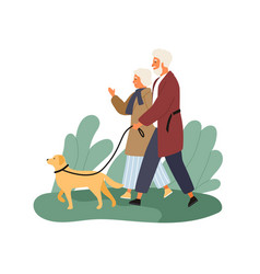 smiling elderly couple walking with dog at park vector image