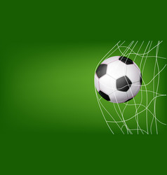 Soccer ball in net hitting goal vector