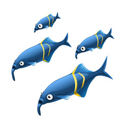 the growth stage of unusual elephant nosed fish vector image