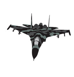 camouflaged aircraft vector image