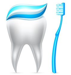 Tooth with toothpaste and toothbrush vector image