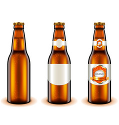 light beer bottle design 3d realistic vector image vector image