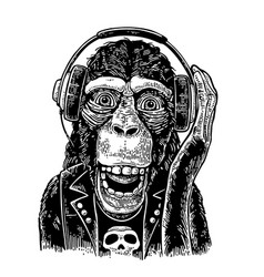 monkey rocker in headphones and t-shirt with skull vector image vector image
