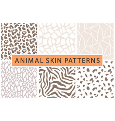 Animal skin bold textures print pattern set vector