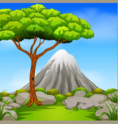 beatiful mountain in forest vector image