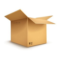 Cardboard box opened vector