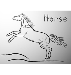 Graceful Horse contour vector
