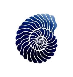 Graphic circle seashell vector