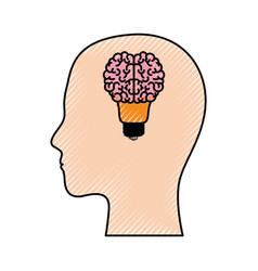 human face silhouette with brain in shape bulb on vector image