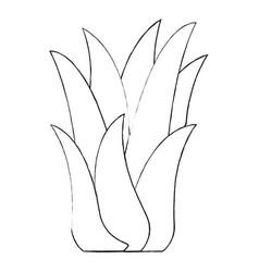 Monochrome blurred silhouette of corn plant vector