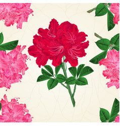 seamless texture flowers pink and red vector image