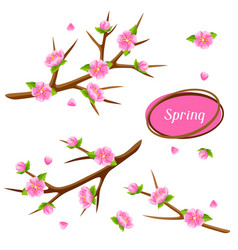 spring set with branches of tree and sakura vector image