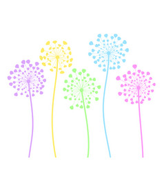 Colorful dandelion flowers in cartoon style on vector