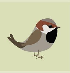 Cute sparrow vector