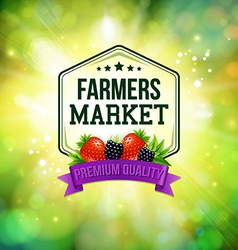 Farmers market poster Blurred background with vector image