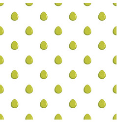 Pomelo pattern seamless vector
