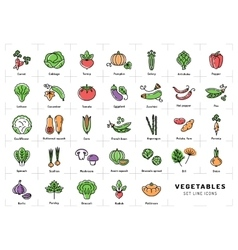 Vegetables icon isolated Spices logo Fresh vector