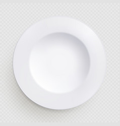 white kitchen dish round isolated on transparent vector image