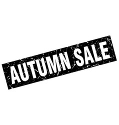square grunge black autumn sale stamp vector image vector image