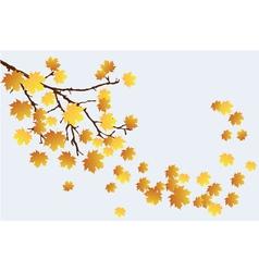 Fall branch vector