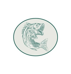 Largemouth Bass Fish Oval Etching vector image