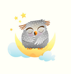 baanimal owl sleeping at night sitting on the vector image