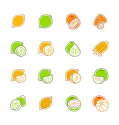 citrus fruits icons - lemon orange and pomelo vector image