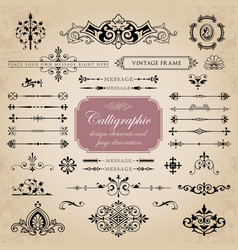 Collection of calligraphic design elements vector