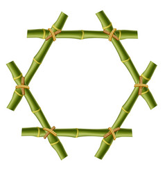 Hexagonal green bamboo stems border with rope and vector