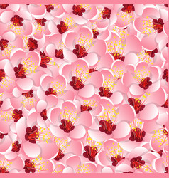 Momo peach flower blossom seamless background vector