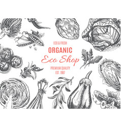 organic farm shop sketch vegetables vector image