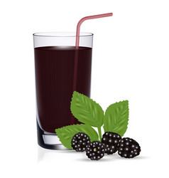 set of blackberry juice and fresh berries isolated vector image