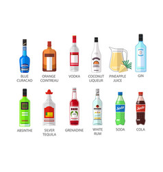 Set of flat style elite alcohot bottle icons vector