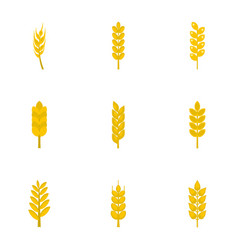Wheat ears icon set flat style vector